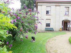 Narryna House, Hobart, Tasmania.