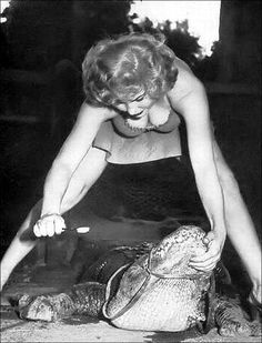 vintage everyday: Alligator tooth brushing, ca. 1950s