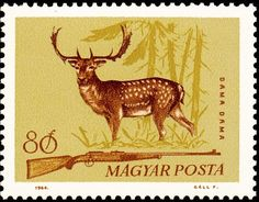 Fallow Deer, Vintage Stamps, Typography Prints, Hunting, Moose Art, Illustration, Countries, Europe, Animals