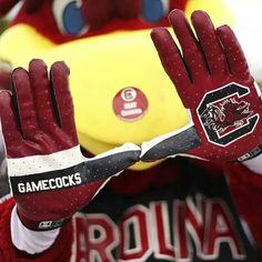 Go Cocks! Gamecock Nation, Gamecocks Football, Football Love, Football Season, College Football, University Of South Carolina, South Carolina Gamecocks, Carolina Football, College Game Days