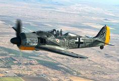 Gosshawk Fw 190