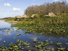 Picture of huts in the Billie Swamp Safari, Big Cypress Seminole Reservation, Florida