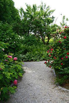 LILLA VILLA VITA: I trädgården just nu