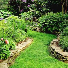 A grass pathway was made by bordering this walkway with a stacked stone wall to create a clean structured look and plants and shrubs to fill in these lifted gardening beds.
