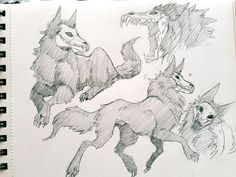 drawings and sketches Animal Sketches, Animal Drawings, Cool Drawings, Art Sketches, Creature Drawings, Furry Drawing, Art Reference Poses, Fantasy Creatures, Mythical Creatures Art