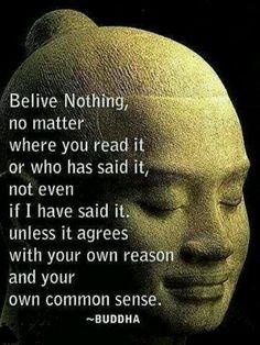 No creas nada, no importa donde lo leas o que lo haya dicho, ni siquiera si lo he dicho. A menos que esté de acuerdo con su propia razón y su propio sentido común. BUDA
