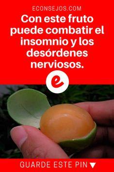 Mamoncillo beneficios | Con este fruto puede combatir el insomnio y los desórdenes nerviosos. | ¿Cómo le llaman en su país a esta fruta? Con este fruto puede combatir el insomnio y los desórdenes nerviosos.