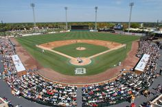 Detroit Tigers Spring Training- Joker Marchant