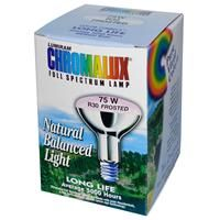 Chromalux, Lumiram, Full Spectrum Lamp, Frosted, 75W R30, 1 Bulb - iHerb.com