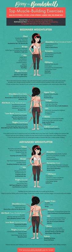 What muscle group does lift target or the best exercise for muscle group bony to bombshell chart infographic guide