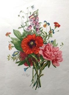 "Flower Print - c1935 - """"MIXED FLOWERS # 1"""" from T.L. Prevost - Large Botanical Lithograph"