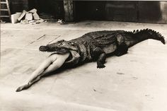 Helmut Newton's image of a Crocodile Eating Ballerina from Pina Bausch's ballet in 1983