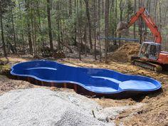 fiberglass pool with tanning ledge and places to seat Backyard Pool Designs, Small Backyard Pools, Small Pools, Swimming Pools Backyard, Pool Spa, Swimming Pool Designs, Pool Landscaping, Landscaping Software, Backyard Ideas