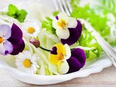 Florile comestibile – parfum, culoare si aroma in farfurie