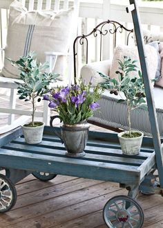 I want to sit here with a cup of coffee and a good book and just smell the summer air. Thistlewood Farm blog