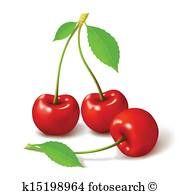 Two red cherry berries with leaf. Cherry Drawing, Medical Illustration, Cherries, Royalty Free Photos, Art Images, Clip Art, Leaves, Fruit, Drawings