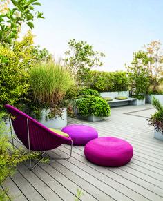 cristina mazzacchelli architetto del paesaggio / terrazza selvaggio con disciplina, milano