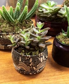 Reusing Voluspa candle containers as succulent planters! Love this!