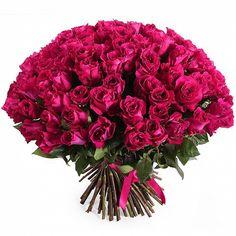 Роза Черри О (Cherry Oh) 101 шт. Букет роз Черри О (Cherry Oh) 50 см. (Эквадор).