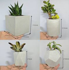 Handmade concrete succulent planter set of Geometric pot set with saucer for indoor plants succulents and cacti White Tray, White Pot, Small Indoor Plants, Potted Plants, Concrete Planters, Planter Pots, Succulent Pots, Succulents, Concrete Color