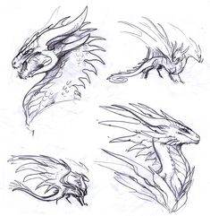 Art Drawings Sketches Simple, Animal Sketches, Animal Drawings, Mythical Creatures Art, Mythological Creatures, Dragon Poses, Dragon Sketch, Monster Drawing, Pinturas Disney