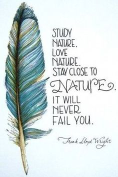 Study nature. Love nature. Stay close to nature. It will never fail you. Frank Lloyd Wright