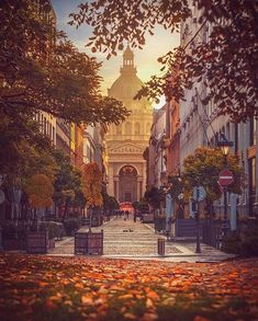 Budapest in the fall