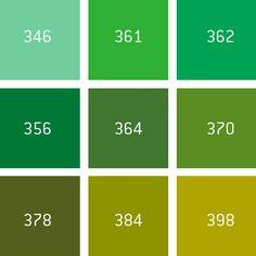 Wähle deine Teppichfarbe aus!