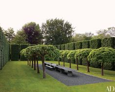 Designer Anouska Hempel's English country house is an aesthetic tour de force. The house is surrounded by formal gardens, including this enclosure of high hornbeam hedges; the Belgian-stone table, by Hempel, is flanked by rows of catalpa trees. English Country Manor, English Countryside, Design Patio, Garden Design, Landscape Architecture, Landscape Design, Landscape Diagram, Cole Park, Hornbeam Hedge