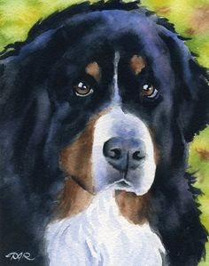 BERNESE MOUNTAIN DOG Art Print Signed by Artist D by k9artgallery, $12.50