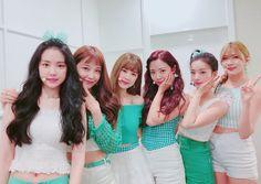 Namjoo Apink, Eunji Apink, Kpop Girl Groups, Korean Girl Groups, Kpop Girls, Seoul Music Awards, Mnet Asian Music Awards, Korean Best Friends, Pink Panda