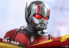 Hot Toys scale Ant-Man Collectible Figure [Ant-Man and The Wasp] Ant Man Suit, Wasp Movie, Antman And The Wasp, Scott Lang, Sideshow Collectibles, Marvel Vs, Marvel Cinematic, Ants, Spiderman