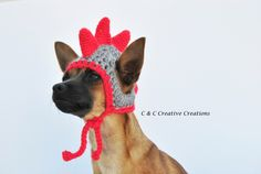 Dino Dog Hat - Pet Hat - Cat Hat - Dog Costume - Made To Order - Hand Crochet - Photography Prop by CCCreativeCreations on Etsy https://www.etsy.com/listing/241643449/dino-dog-hat-pet-hat-cat-hat-dog-costume
