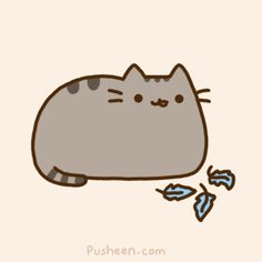 Pusheen is now on twitter!  https://twitter.com/PusheenOfficial  P.S. no more twitter bird (courtesy of Pusheen himself.)