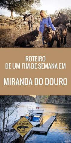 Roteiro de um fim-de-semana em Miranda do Douro Great Places, Places To Visit, Douro Portugal, Portuguese Culture, Homeland, Travel Around, Natural Beauty, Explore, Nature