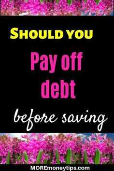 Should you pay off debt before saving? How do you decide whether you should pay off debt or start sa Budget App, Budget Planner, Money Tips, Money Saving Tips, High Interest Savings Account, Credit Card Transfer, Debt Payoff, Pay Debt, Debt Repayment