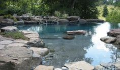 gorgeous pool- love that it looks like a pond, especially with those rocks in the middle