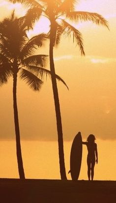 Girl and surfboard silhouette on beach