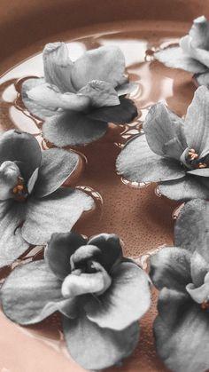 Phone Screen Wallpaper, Flower Phone Wallpaper, Iphone Background Wallpaper, Tumblr Wallpaper, Photo Wallpaper, Aesthetic Pastel Wallpaper, Aesthetic Backgrounds, Aesthetic Wallpapers, Flower Aesthetic