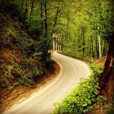 A road in Javaher-deh