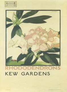 AM on The Present Tense: BACK TO SCHOOL + VINTAGE KEW GARDENS POSTERS