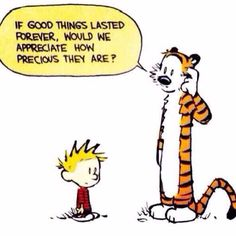 Calvin And Hobbes Quotes: life lessons Calvin And Hobbes Comics, Best Calvin And Hobbes, Calvin And Hobbes Quotes, Calvin And Hobbes Tattoo, Calvin And Hobbes Wallpaper, Lovers Quotes, Me Quotes, Funny Quotes, Qoutes