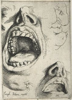 Jusepe de Ribera, Study of Mouths and Noses, c. Anatomy Drawing, Anatomy Art, Art Sketches, Art Drawings, Baroque Art, Drawing Expressions, Art Studies, Gravure, Figure Drawing