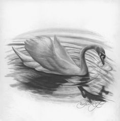Learning to Draw Graphite Pencil   Here's What You Need to Know #graphitedrawing #drawingtips