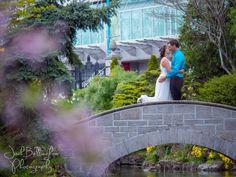 Bride and Groom Kissing in a beautiful garden. Romantic wedding picture in Oakes Garden Theatre. Destination wedding in Niagara Falls. Niagara Falls Elopement Photographer. @niagaraparkswed  #JoshBellinghamPhotography