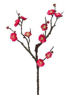 Enjoy this plum blossom branch in watermelon. this branch will make a nice accent to any arrangement.  Find high quality silk flowers and decor for your DIY wedding and decor needs on Afloral.com #diy #weddings #flowers #crafts #decor #pink