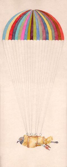 Passenger Pigeon Archival Print
