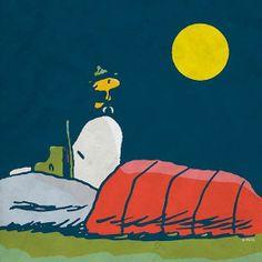 Sweet Dreams / snoopy and woodstock / the peanuts gang Peanuts Gang, Peanuts Cartoon, Peanuts Comics, Woodstock Snoopy, Snoopy Beagle, Camp Snoopy, Charlie Brown Y Snoopy, Charles Shultz, Sally Brown