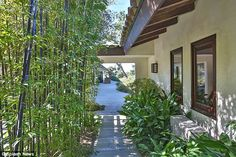 Tropical ambience: The outdoor areas have lush landscaping including bamboo and palm trees...