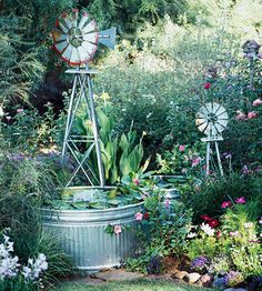 Flower garden with a galvanized stock tank pond, and windmills